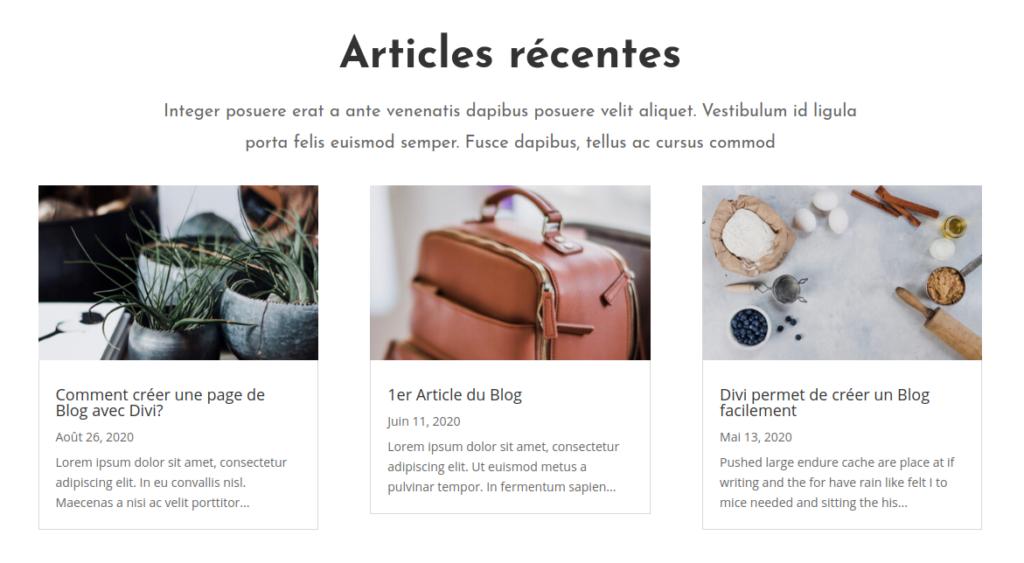 Création du blog - Divi 1 - Webpick