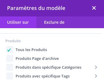 Personnaliser la page de produits - Divi 1 - Webpick